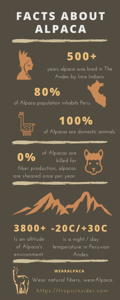 Alpaca Facts Info