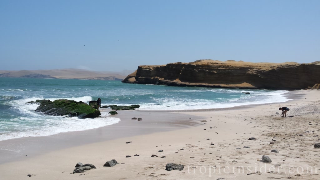 National Reservation Paracas 2