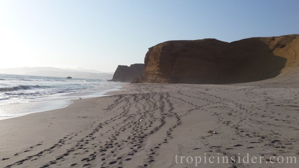 National Reservation Paracas 3
