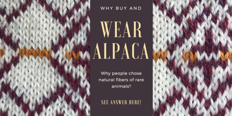 Why wear alpaca
